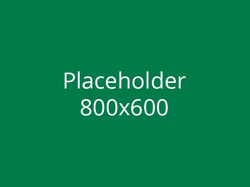 placeholder_800_600_2